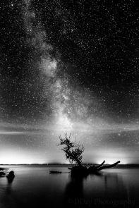 51a7fb95d69a284ee9eeb72a27644eb7--photography-art-night-photography